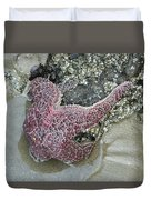 Stretched Starfish Duvet Cover