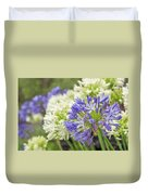 Striking Blue And White Agapanthus Flowers Duvet Cover