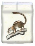 Striped Bush Squirrel, Paraxerus Flavovittis Duvet Cover