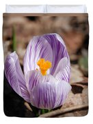Striped Crocus Duvet Cover