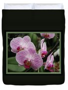 Striped Orchids With Border Duvet Cover