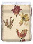 Studies Of Four Tulips, Elias Van Nijmegen, C. 1700 - C. 1725 Duvet Cover