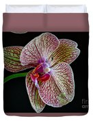Study Of An Orchid 2 Duvet Cover