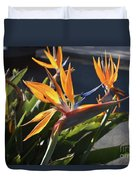 Stunning Bunch Of Flowers With Bright Orange Petals  Duvet Cover