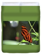 Stunning Orange And Black Oak Tiger Butterfly In Nature Duvet Cover