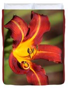 Stylistic Daylily Duvet Cover