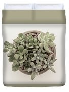 Succulent Plant From The Top Duvet Cover