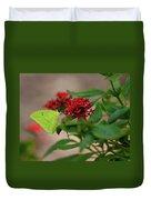 Sulphur Butterfly On Red Flower Duvet Cover