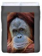 Sumatra Orangutan Portrait Duvet Cover