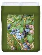Summer Blueberries Duvet Cover