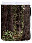 Summer In Redwood National Park Vertical Duvet Cover