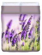 Summer Lavender  Duvet Cover by Nailia Schwarz