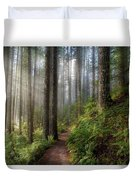 Sun Beams Along Hiking Trail In Washington State Park Duvet Cover