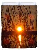Sun In Reeds Duvet Cover