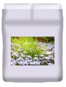 Sun-kissed Meadows With White Star Flowers Duvet Cover