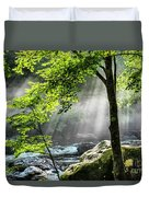 Sun Rays On Williams River  Duvet Cover