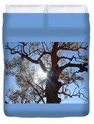 Sun Tree Duvet Cover