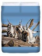 Sunbathing Ring-tailed Lemurs Duvet Cover