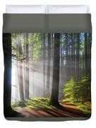 Sunbeams Along Hiking Trails Duvet Cover