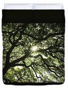 Sunburst Through Tree Duvet Cover