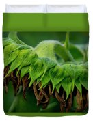 Sunflower 2017 1 Duvet Cover