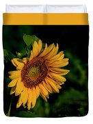 Sunflower 2017 11 Duvet Cover