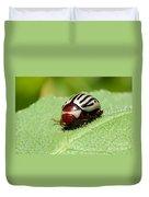 Sunflower Beetle Duvet Cover
