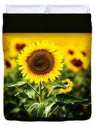 Sunflower Crops On A Farm In South Dakota Duvet Cover