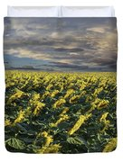 Sunflower Fields Near Denver International Airport Duvet Cover