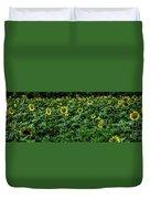 Sunflower Field Panorama Duvet Cover