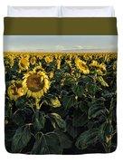 Sunflower Fields  Duvet Cover