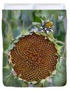 Sunflower Seedhead Duvet Cover