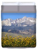 2a6742-sunflowers And Mount Humphreys  Duvet Cover