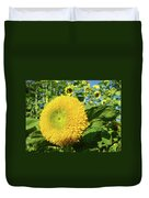 Sunflowers Art Prints Sun Flower Giclee Prints Baslee Troutman Duvet Cover