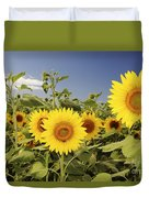 Sunflowers On North Shore Duvet Cover by Vince Cavataio - Printscapes