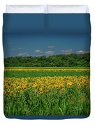 Sunflowers Weldon Spring Mo_dsc9830_16 Duvet Cover