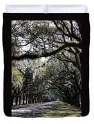 Sunlight And Shadows On Live Oaks Duvet Cover