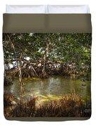 Sunlight In Mangrove Forest Duvet Cover