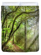 Sunlight On The Trail Duvet Cover