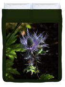 Sunlit Bloom Of Alpine Sea Holly Duvet Cover