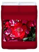 Sunlit Blooms Of Dortmund Hybrid Scots Briar Rose Duvet Cover