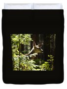 Sunlit Deer Friend Duvet Cover