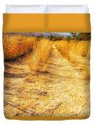 Sunlit Grasses Duvet Cover