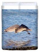 Sunlit Gull Wings Duvet Cover