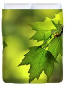 Sunlit Maple Leaves In Spring Throw Pillow For Sale By