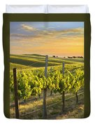 Sunlit Vineyard Duvet Cover