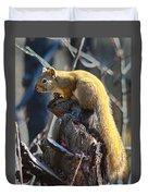 Sunning Squirrel Duvet Cover
