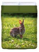 Sunny Bunny Duvet Cover