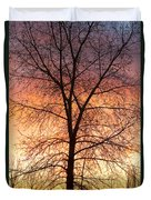 Sunrise December 16th 2010 Duvet Cover by James BO  Insogna
