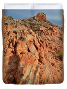 Sunrise On Colorful Sandstone In Valley Of Fire Duvet Cover